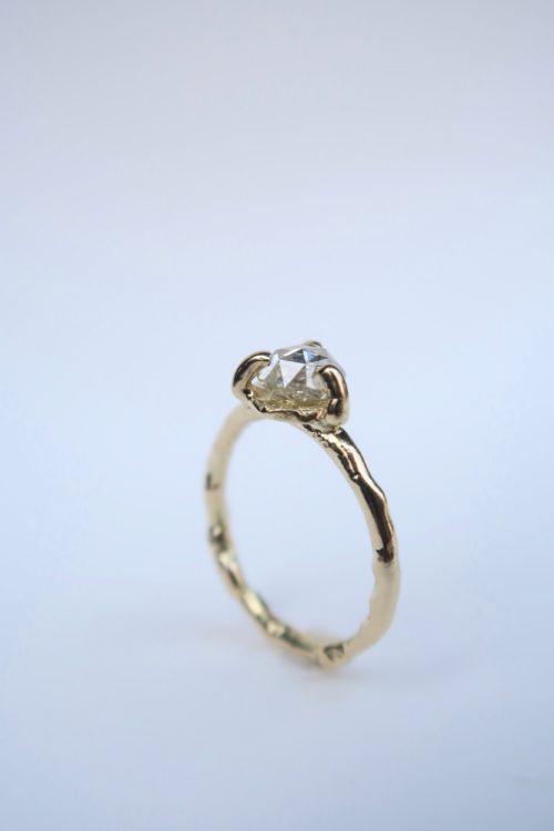 Een Schitterende Diamant